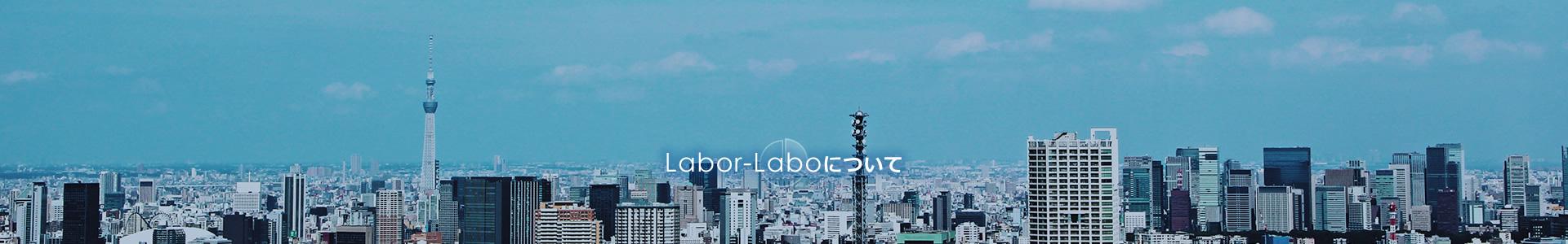 Labor-Laboについて